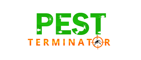 Questions and Answers about pest control services